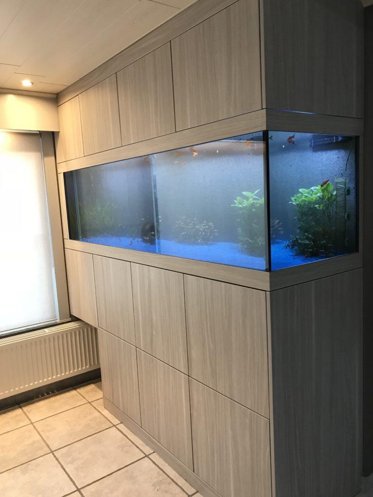 ingewerkte aquarium